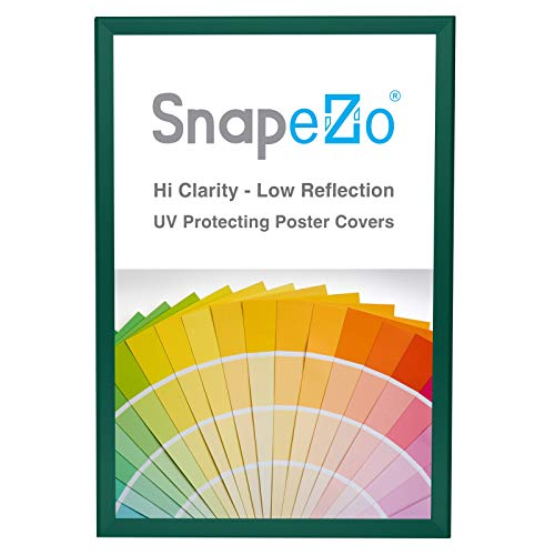 SnapeZo Poster Frame 20x30 Inches, Green 1.25 Inch Aluminum Profile, Front-Loading Snap Frame, Wall Mounting, Professional Series