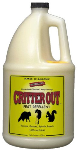 Rat, Mouse and Rodent Repellent: Critter Out 1 Gallon Concentrate (Makes 10 Gallons) by Deer Out