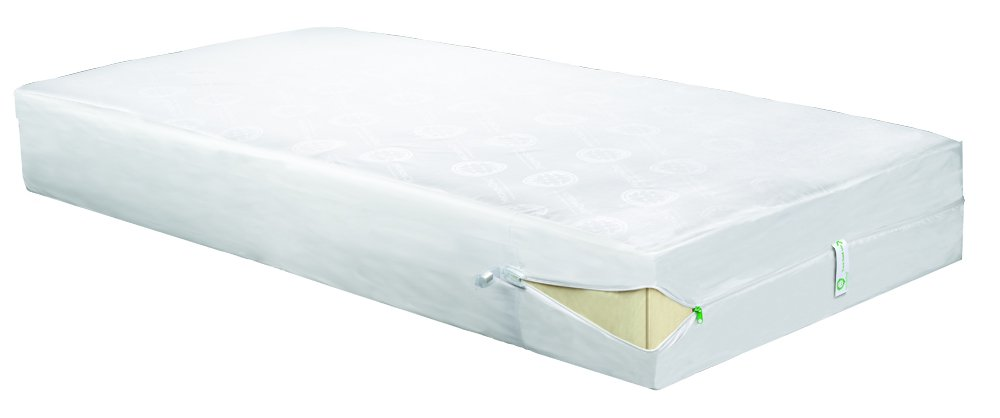 Clean Rest SimpleWater-Resistant, Allergy and Bed Bug Blocking Mattress Encasement, Queen