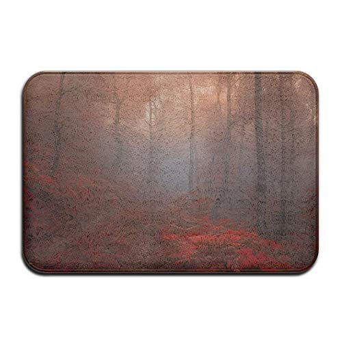fei tong Autumn Road Trees Fog Landscape Cool in Absorbent A