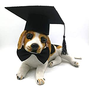 Hemarty Graduation Cap for Dogs Satin Bow Tie Dog Pet Costume Hat Decorations Party Decor Grad Hat with Black Tassel for Dogs Cats Pets Decor 49