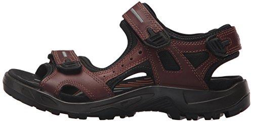 Ecco Tout brandy Hommes Chaussures Multisports De Air Pour Plein terrain wOqBYISq