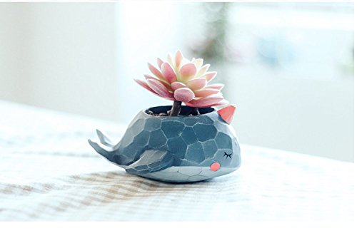 Cute Resin Whale Meaty Pot By SWONVI , Succulent Pots with Drainage Resin Mini Flower Pot Garden Plants Vase Desk Flower Decoration (Whale)
