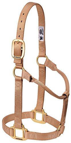 Weaver Leather Original Non-Adjustable Nylon Horse Halter, Average, Sand ()