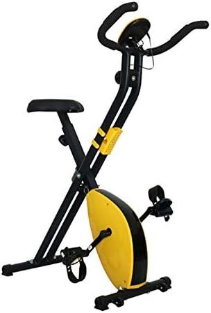 ZALIANG Bicicleta Estática Plegable para Interiores, Asiento ...