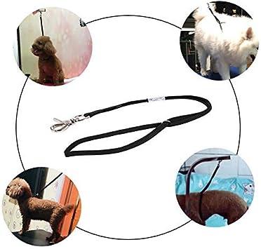 HEEPDD Cuerda de Aseo para Mascotas, Lazo del arnés de la Cuerda ...