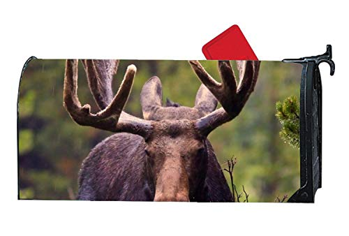 JuLeFan Mailbox Cover Outdoor Decoration, North Moose, Rust-Proof Magnetic Mail Box ()