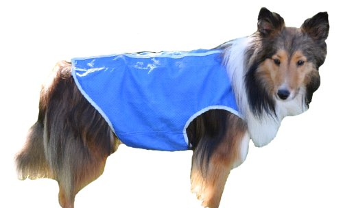 Cool Runners Dog Cooling Jacket Size: Medium, 17-Inch-20-Inch Chest, My Pet Supplies