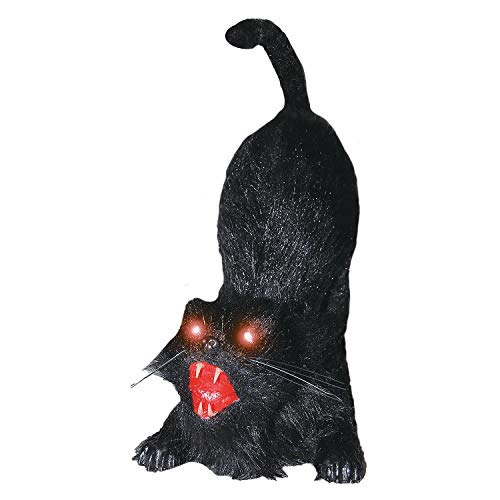 Fun Express - Animated Cat 21 Inch for Halloween - Home Decor - Decorative Accessories - Home Accents - Halloween - 1 Piece]()
