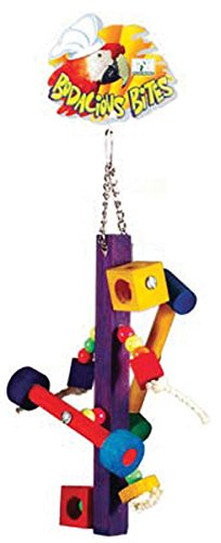 - Bodacious Bites Bird Toy Color: Spinner, Size: 5