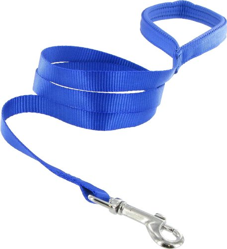 Kakadu Pet Galaxy Padded Nylon Dog Lead, 1-Inch by 48-Inch, Blue, My Pet Supplies