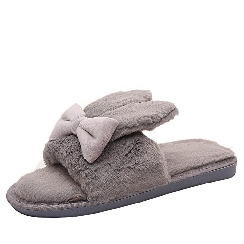 Woods Watch Ladies Tiger (HYIRI Womens Winter Indoor Home Shoes Warm Slippers)