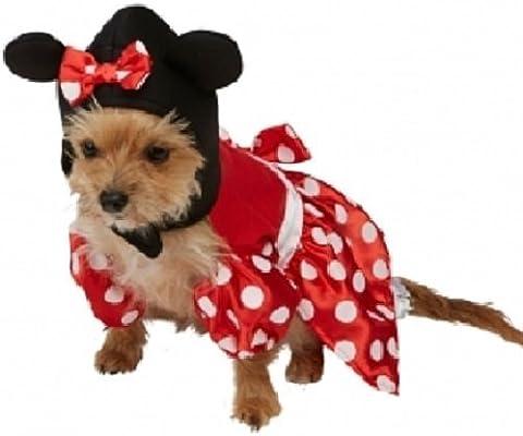 Mascota Perro Gato Oficial Disney Minnie o Mickey Mouse Halloween ...