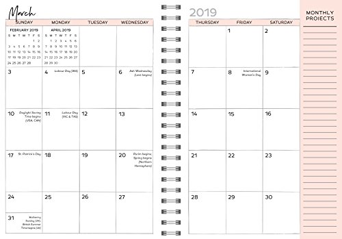 2019 Amy Knapp's The Very Busy Planner: August 2018-December 2019