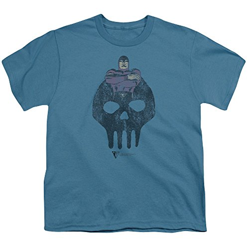 Phantom Icon Big Boys Shirt Slate (Phantom Icon)