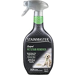 Stainmaster Carpet Care Stain Remover, Pet, 22 oz
