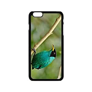 Bird Hight Quality Plastic Case for Iphone 6