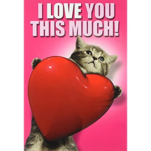 NobleWorks C1644VDG Love You This Much Cat Funny Valentine's Day Unique Greeting Card, 5 x 7 Sales