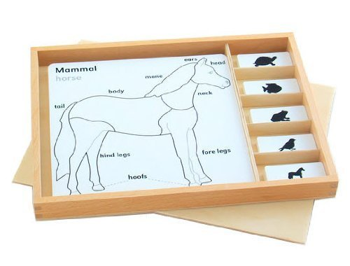 Montessori Animal Puzzle Activity Set