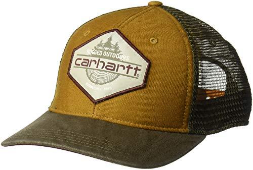 Carhartt Men's Bear Lake Cap, Oiled Walnut, OFA