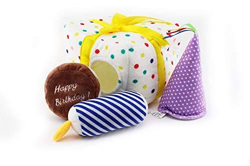 Midlee Birthday Present Find a Toy Dog Toy -