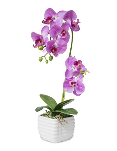 Dahlia Realistic Silk Orchid Artificial Flower Arrangement with White Ceramic Pot, Pink