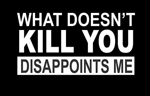 ShopForAllYou Stickers & Decals (White) What Doesn't Kill You Disappoints Me Vinyl Decal Sticker Car Truck Made in USA
