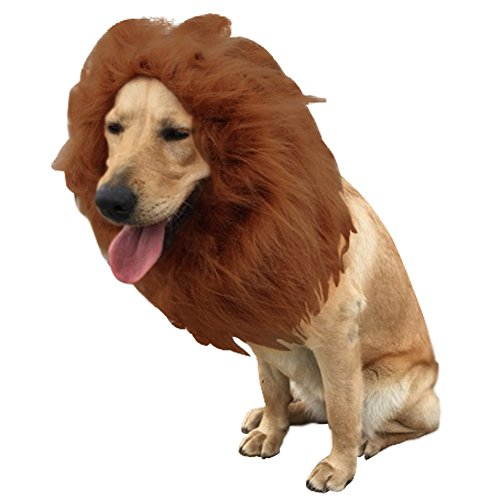 Dora Bridal Lion Mane For Dog,Lion Wig for Pets,Halloween Costume for Pets Festival Party Fancy Hair Dog Clothes with Ears,Lion Wig with Tail ()