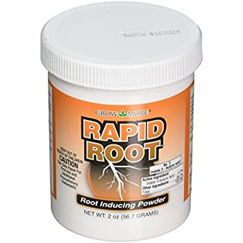 Rapid Root Rooting Powder - 2 oz.