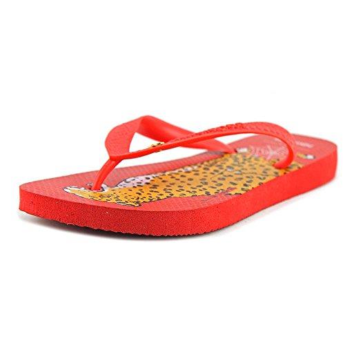 charlotte-olympia-bruce-women-us-6-red-flip-flop-sandal