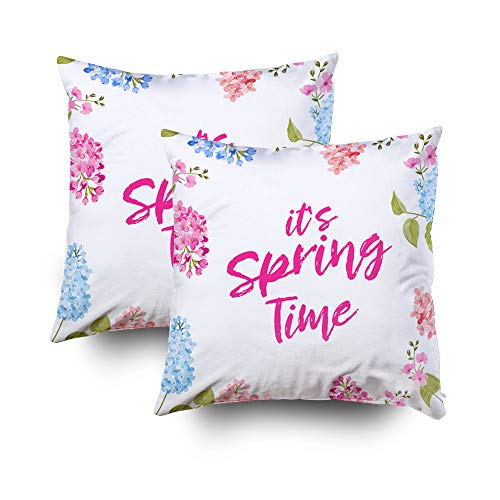Sleepyhead Pillow Cover,Shorping Zippered Pillowcases 18x18Inch Pack 2 Throw Pillow Covers Spring time concept of card with blooming flowers isolated over blue background Vector illustration for Home