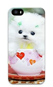 Lilyshouse Lovely Small White Dog Iphone 5 5S Hard Protective 3D Cover Case