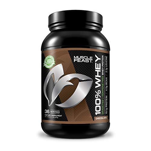 100% Grass Fed Whey Protein - Hormone Free | Stacked with Isolate, Concentrate and Hydrolyzed Whey Protein | 4.5g of BCAAs Per Serving (2lb, Chocolate)
