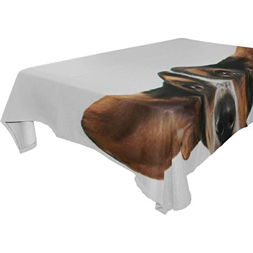 THKDSC A Basset Hound with Big Ears 100% Polyester Tablecloth Printed Dining Room Kitchen Rectangular Round Table Cover Tabletop Decor 60x108 Inch Washable