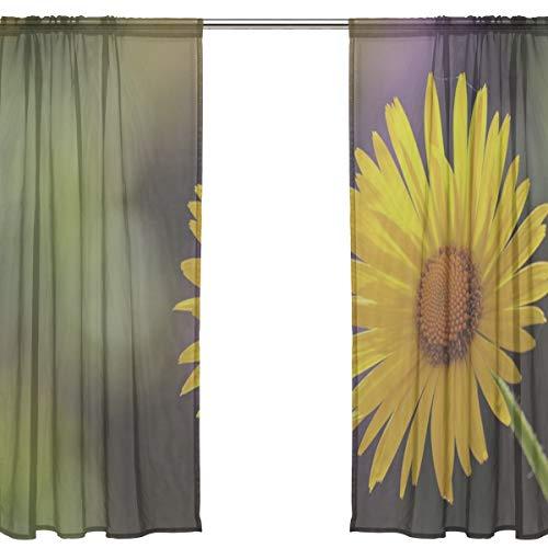 - RH Studio Sheer Curtain Drape Two Panel Flower Daisies Blossom Bloom Door Window Gauze Curtains for Living Room Bedroom Office(55x78inch