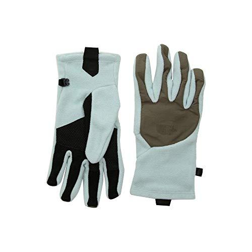 (ザ ノースフェイス) The North Face レディース 手袋?グローブ Denali Etip(TM) Gloves [並行輸入品]