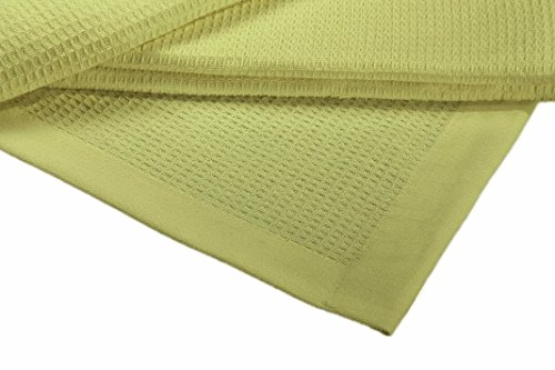 Crover Collection All Season Thermal Waffle Cotton Queen Blanket 90x90 Light Green with Deep Plain Edge Border and Durable Soft Yarns