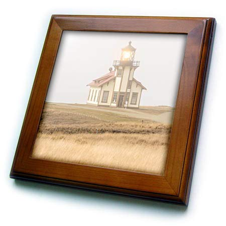 3dRose Danita Delimont - California - Point Cabrillo Lighthouse, Near Mendocino, California, USA - 8x8 Framed Tile (ft_314719_1)