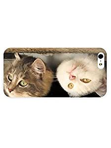 3d Full Wrap Case for iPhone 5/5s Animal Cute Kittens