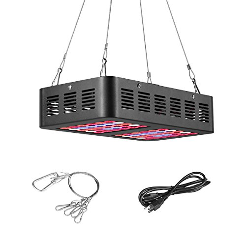 300W Led Grow Light Yield in US - 9