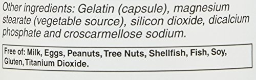 Vitacost Alpha Lipoic Acid & Acetyl L Carnitine HCl 1,600 mg per serving 240 Capsules