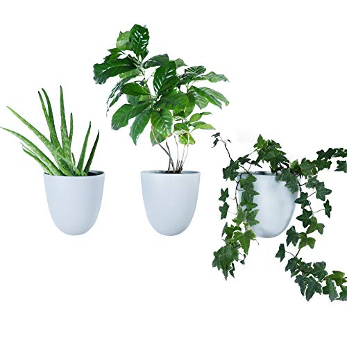 Melamine Wall Planters, Cloud Blue, Set of 3 (Wall Planter)
