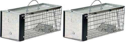 Havahart 0745 One-Door Animal Trap for Chipmunk, Squirrel, Rat, and Weasel, X-Small (Pack of 2)