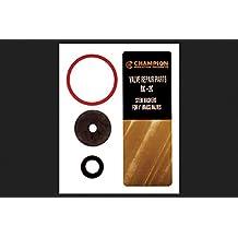 CHAMPION IRRIGATION PD RK-2C Valve Stem Gasket Repair Kit, 1-Inch