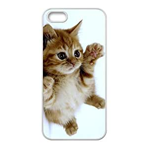 Adorable Little Kitten Kitty White Phone Case for iPhone 6 4.7