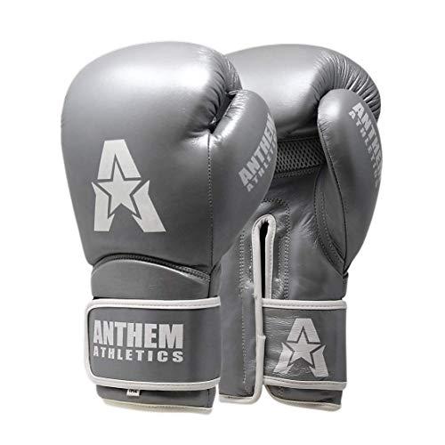 Anthem Athletics STORMBRINGER II Leather Boxing Gloves - Muay Thai, Kickboxing, Striking - Silver - 14 oz.
