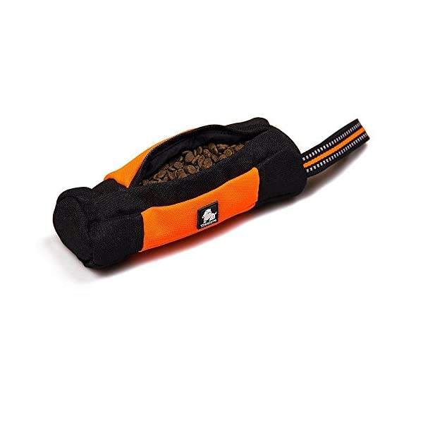 Raffaelo Dog Treat Bag Dog Training Bag Pouch Dog Food Storage for Puppy Dog Training and Outdoors Activities – (Orange… Click on image for further info.
