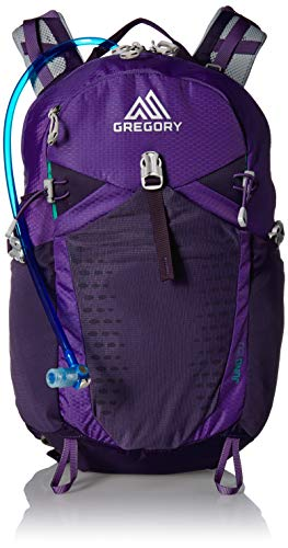 Gregory Mountain Products Juno 25 Liter 3D-Hydro Women's Daypack, Acai Purple, One Size ()