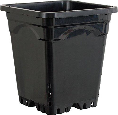 Active Aqua HG9X9SB Square Pot (24 Pack), 9 by 9'', Black by Hydrofarm