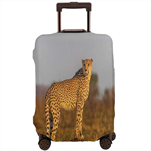 Travel Luggage Cover,African Wild Animal Cheetah Standing On Termite Mound Savannah Nature View Suitcase Protector (Bedding Cheetah Inc)